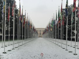 An Overview of ADHRB Engagement at the 31st Session of the United Nations Human Rights Council