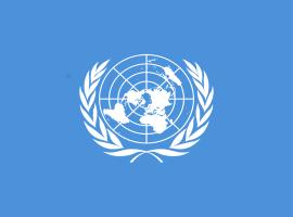 Four Bahrainis Arbitrarily Detained, Says UN Body