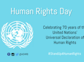 On International Human Rights Day, Systematic Abuses Persist in the GCC