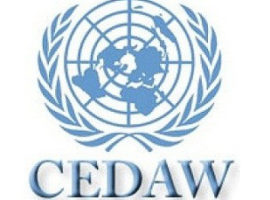 CEDAW Review Shows Limits of Saudi Arabia's Gender Policies