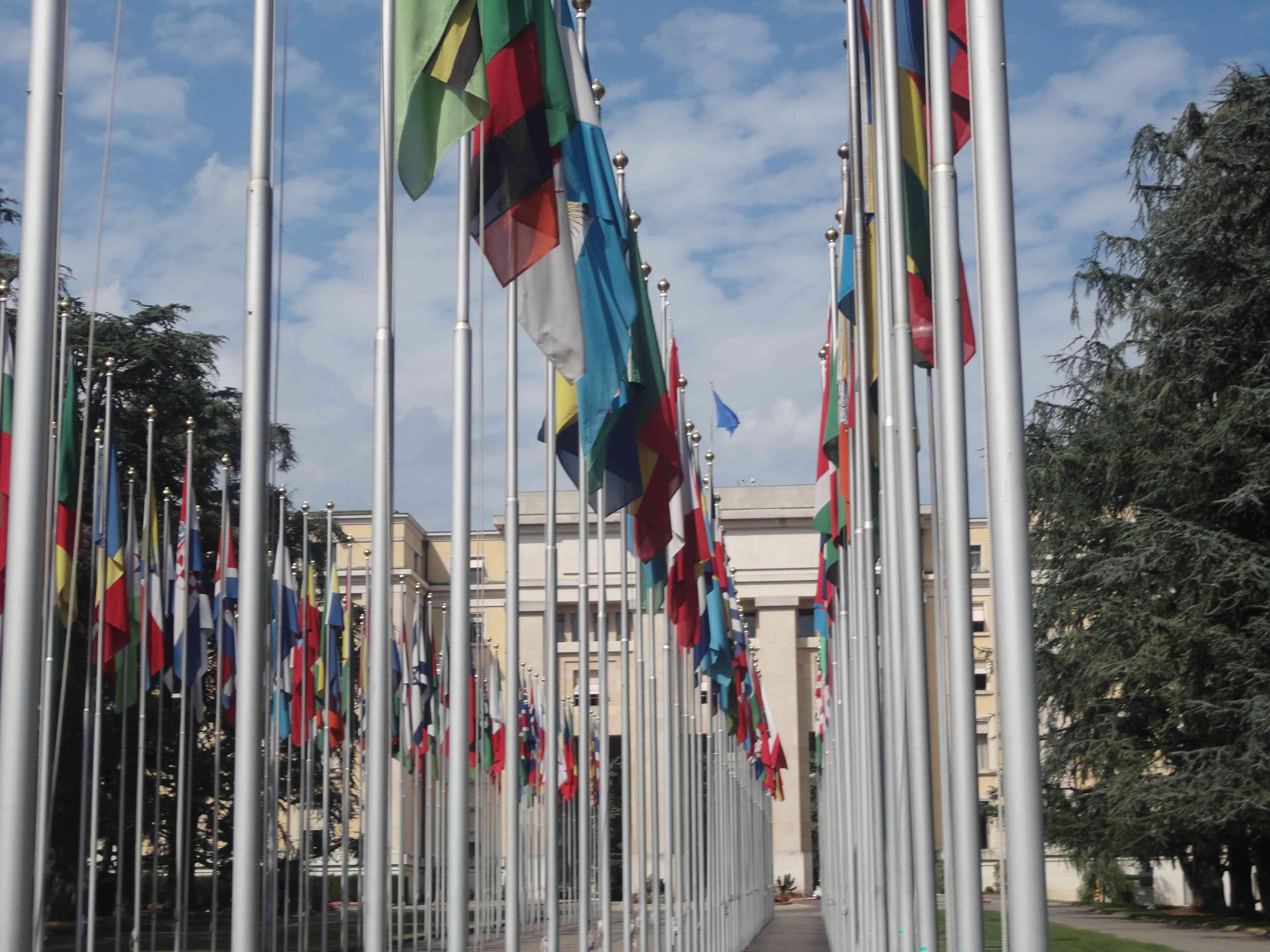 التاجر: عزوف بحريني عن التعاون مع الامم المتحدة