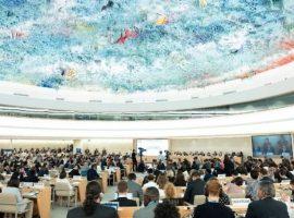 بيان خطي لمجلس حقوق الانسان قبل دورته الثالثة والأربعين: أحكام الإعدام في البحرين