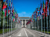 NGOs Applaud New Joint Communications Report from UN Special Procedures