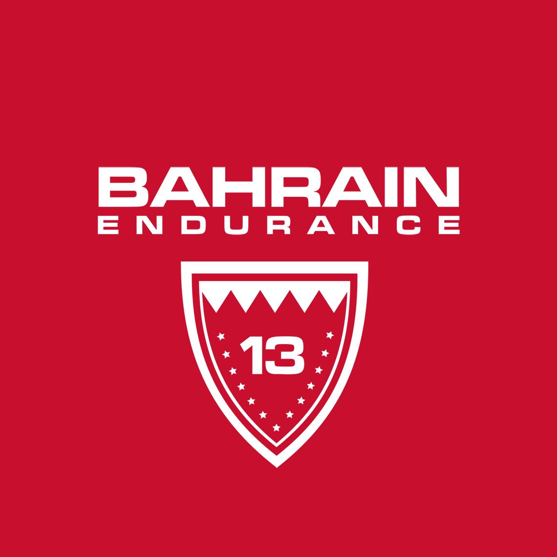 Open Letter from NGOs to Bahrain 13 Endurance Team
