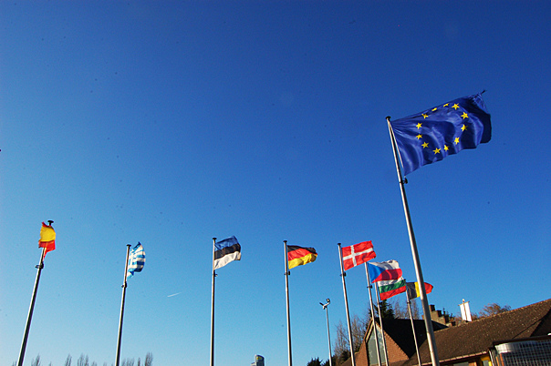EU Parliament Adopts Resolution Condemning Ali al-Nimr Execution