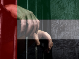 Torture in UAE Prisons Remains Rampant, both Domestically and Internationally, as US Fails to Show Concern