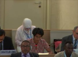 ADHRB at HRC38 raises concerns over widespread torture in UAE prisons