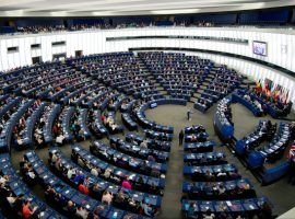 38 MEPs call on Bahrain to make parliamentary elections free and fair