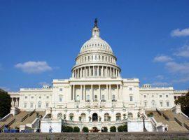 Now Hiring: Fall 2019 Advocacy Interns