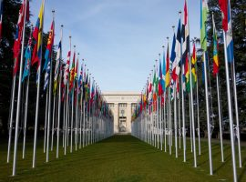 Open Letter to Members and State Delegations in the Human Rights Council