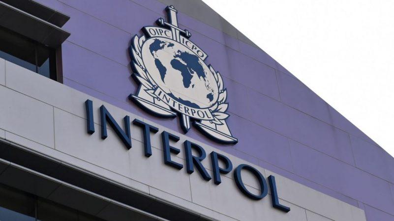 INTERPOL Deletion Request Program