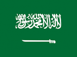 UN Special Procedures Publish Urgent Appeal to Saudi Arabia on Executions and Wave of Arrests of Human Rights Defenders, Writers, and Intellectuals
